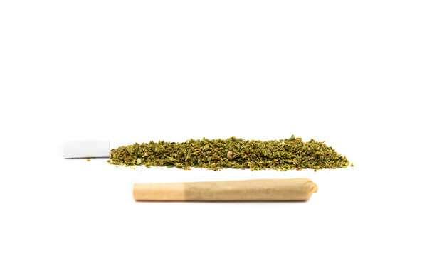 CBD flower joint pre roll