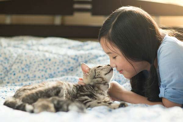 Pet CBD oil for cats with owner